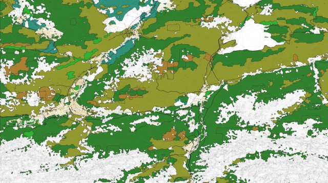 dsf_garmisch_mesh_only_with_road-network_with_forest-polygons