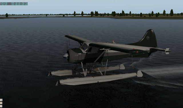 SMS_Beaver_Water02