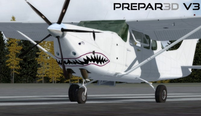 Cessna New